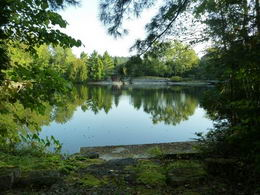 Pond and Cabana - Country homes for sale and luxury real estate including horse farms and property in the Caledon and King City areas near Toronto